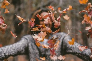 Fall Activities in Frederick, MD